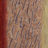 Картина Зарождение Энкаустика Абстракция Фактурная живопись Киев Original encaustic painting